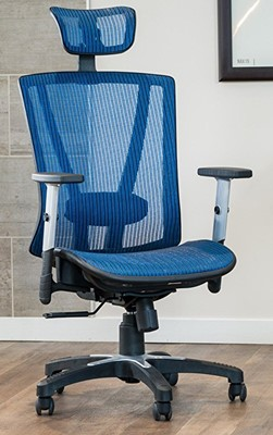 Ergomax Office Chair - ergonomic office chair with neck support